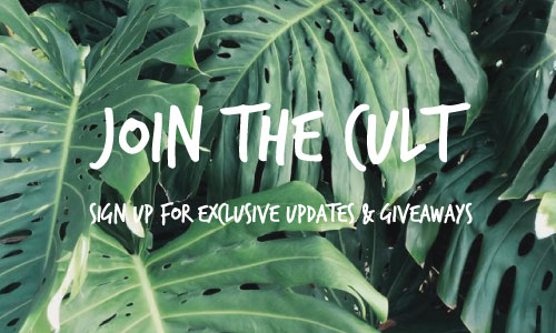 CULT-Newsletter-Signup