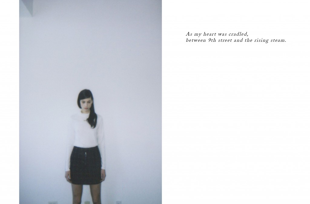 Dolores-Haze-Polaroid-Journal11