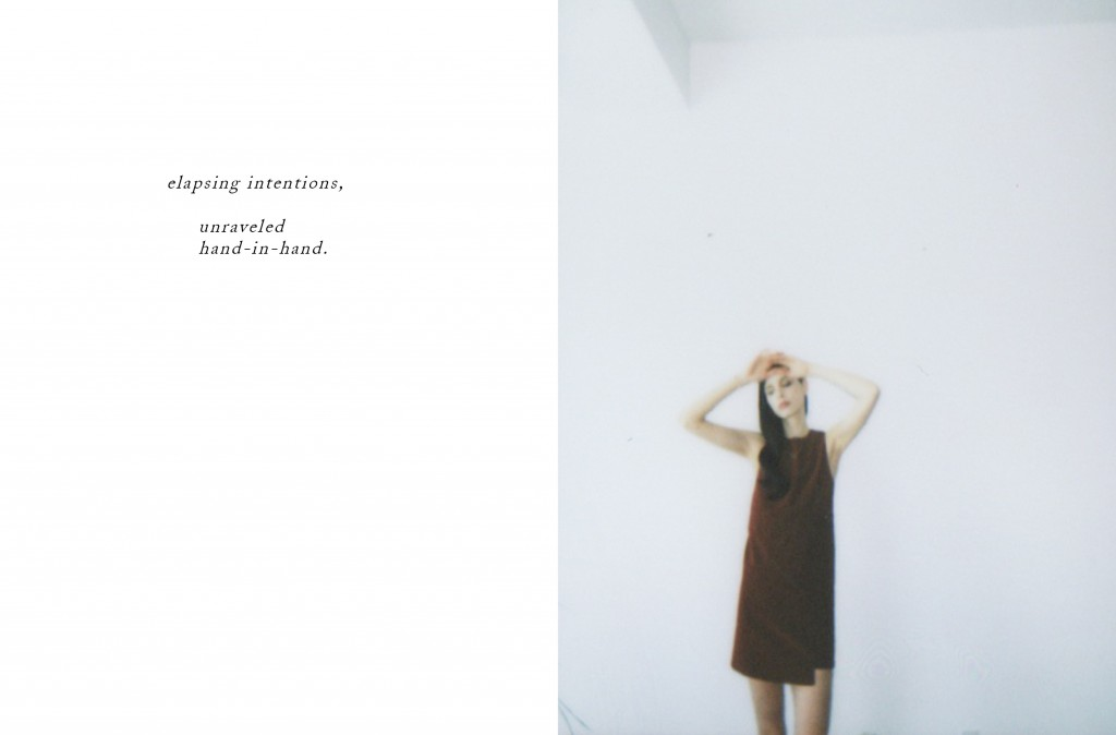 Dolores-Haze-Polaroid-Journal13