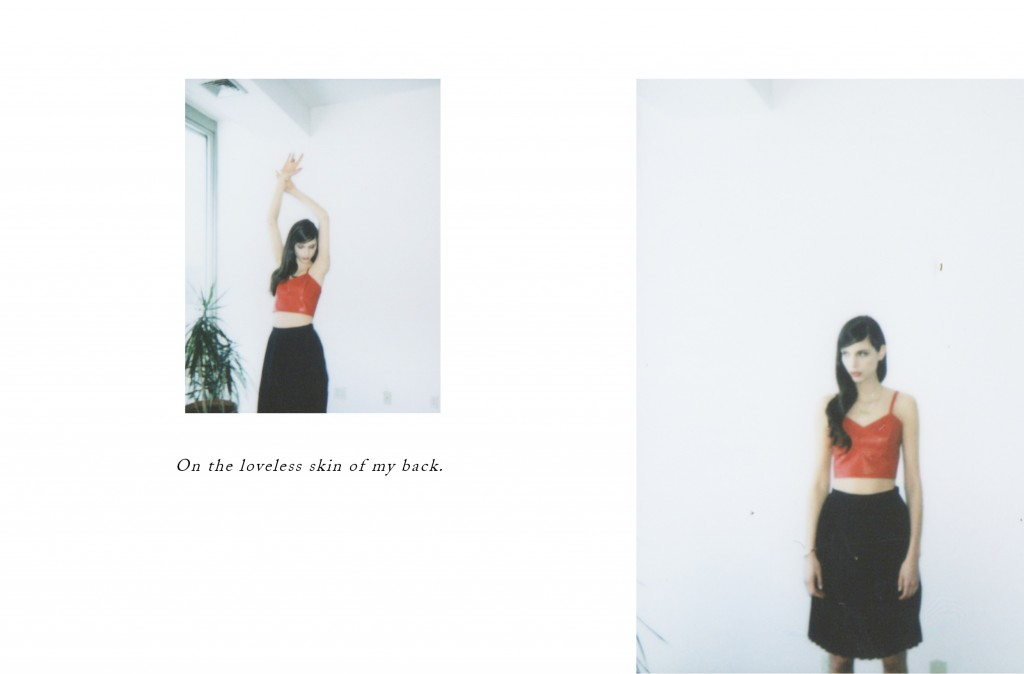 Dolores-Haze-Polaroid-Journal16